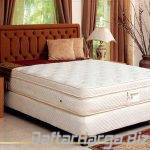 quantum spring bed